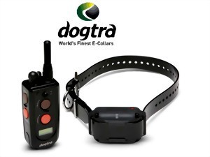 Hundeferntrainer Dogtra 1210NCP